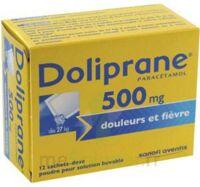 DOLIPRANE 500 mg Poudre pour solution buvable en sachet-dose B/12 à EPERNAY