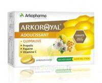 Arkoroyal Propolis Pastilles adoucissante gorge guimauve miel citron B/24 à EPERNAY
