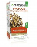 Arkogélules Propolis Bio Gélules Fl/45 à EPERNAY