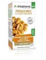 Arkogélules Fenugrec Bio Gélules Fl/40 à EPERNAY