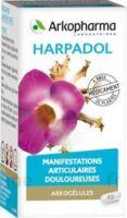ARKOGELULES HARPAGOPHYTON Gélules Fl/150 à EPERNAY
