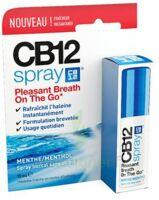 CB 12 Spray haleine fraîche 15ml à EPERNAY