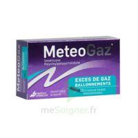 METEOGAZ Poudre orodispersible 10 Sticks à EPERNAY