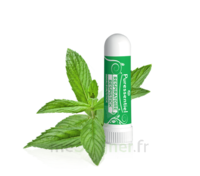 Puressentiel Respiratoire Inhaleur Respiratoire aux 19 Huiles Essentielles - 1 ml à EPERNAY