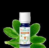 Puressentiel Huiles essentielles - HEBBD Ravintsara BIO* - 5 ml à EPERNAY
