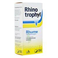 RHINOTROPHYL Solution pour pulvérisation nasale 1Fl/12ml à EPERNAY