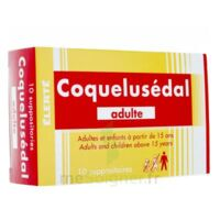 COQUELUSEDAL ADULTES, suppositoire à EPERNAY