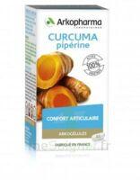 Arkogelules Curcuma Pipérine Gélules Fl/45 à EPERNAY