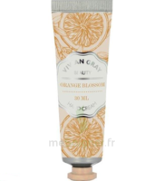 Vivian Gray Crème Mains Orange 30ml à EPERNAY
