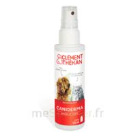 Clément Thékan Caniderma Solution externe cicatrisant Spray/125ml à EPERNAY