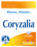 Boiron Coryzalia Comprimés orodispersibles à EPERNAY