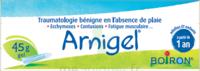Boiron Arnigel Gel T/45g à EPERNAY